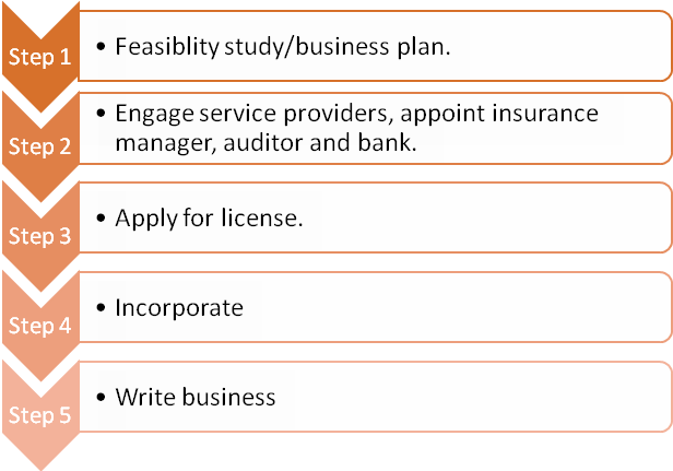 Step 1: Feasibility study/business plan. Step 2: Engage service providers, appoint insurance manager, auditor and bank. Step 3: Apply for license. Step 4: Incorporate.Step 5: Write business.